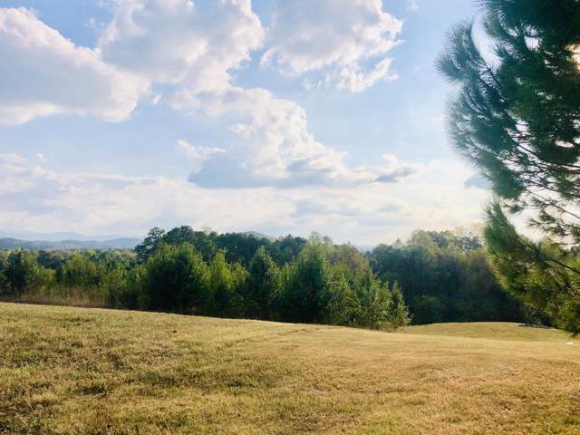 English Hills Drive, Sevierville, TN 37876 (#1095323) :: Billy Houston Group