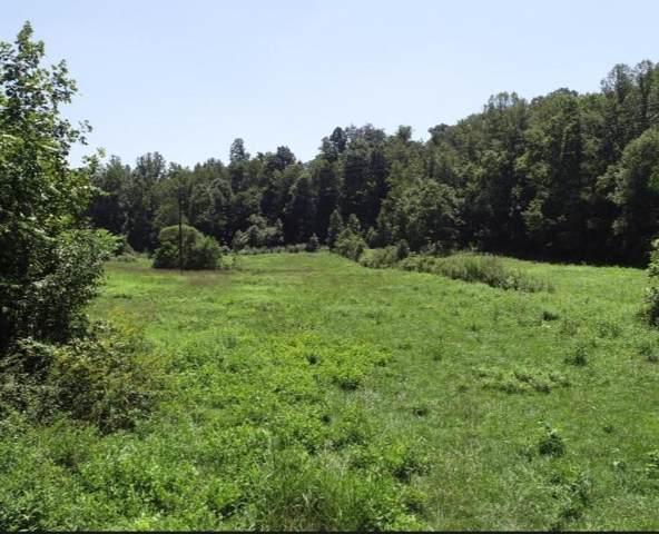 Snodgrass Rd, New Tazewell, TN 37825 (#1095327) :: Billy Houston Group