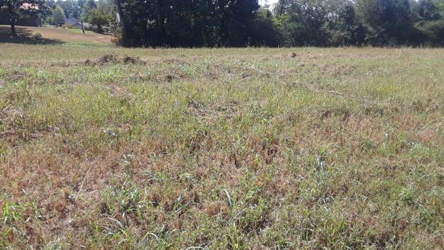 Lot 3 Melford Drive, Strawberry Plains, TN 37871 (#1095366) :: Realty Executives