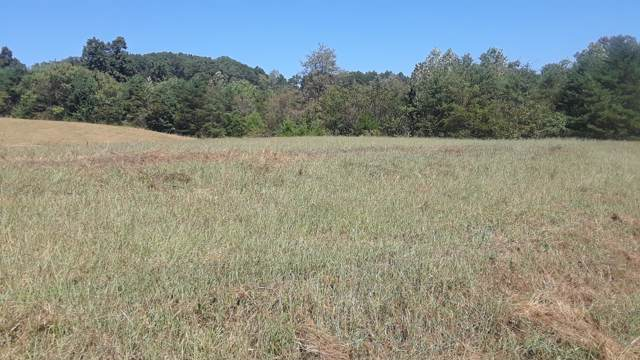 Lot 7 Melford Drive, Strawberry Plains, TN 37871 (#1095369) :: Realty Executives