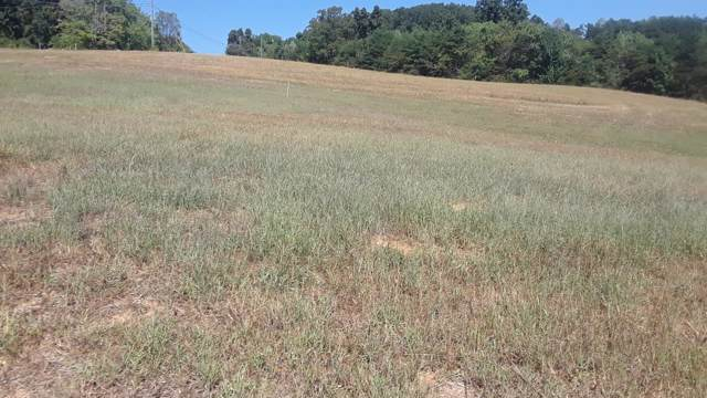 Lot 8 Melford Drive, Strawberry Plains, TN 37871 (#1095372) :: Realty Executives