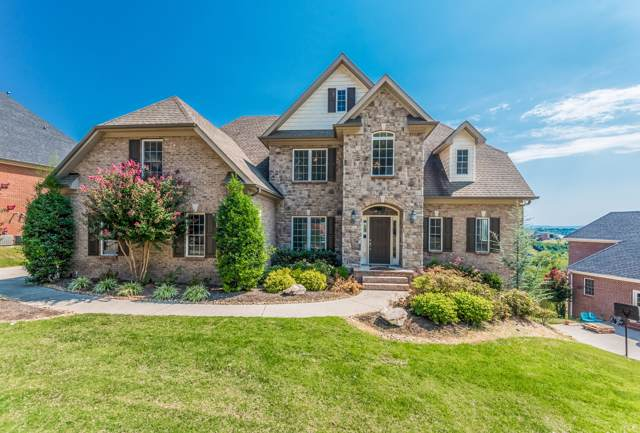 256 Brooke Valley Blvd, Knoxville, TN 37922 (#1095408) :: Billy Houston Group