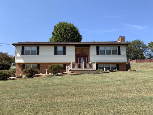 3514 Peppermint Hills Drive, Maryville, TN 37804 (#1095434) :: Billy Houston Group