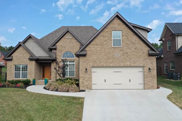 12025 Poplar Meadow Lane, Knoxville, TN 37932 (#1095436) :: Billy Houston Group