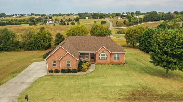 3302 Colby Cove Drive, Maryville, TN 37801 (#1095517) :: Realty Executives