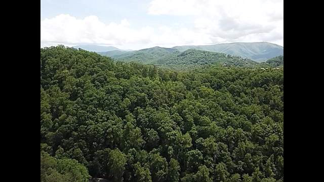Feld Wynde Close Way, Pigeon Forge, TN 37862 (#1095621) :: Realty Executives