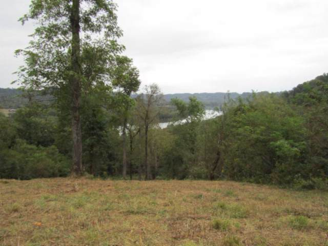 Lot 61 Cumberland Valley Drive, Gainesboro, TN 38562 (#1095721) :: The Creel Group | Keller Williams Realty