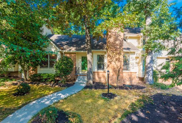 1037 Harrogate Drive, Knoxville, TN 37923 (#1095757) :: SMOKY's Real Estate LLC