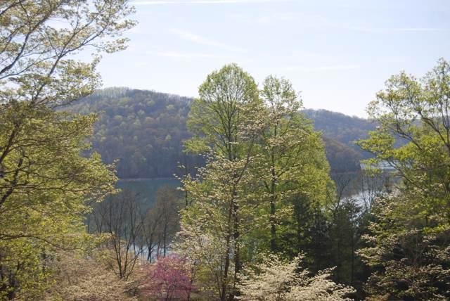 Lot 45 Bucks And Does Lane, LaFollette, TN 37766 (#1096019) :: Shannon Foster Boline Group