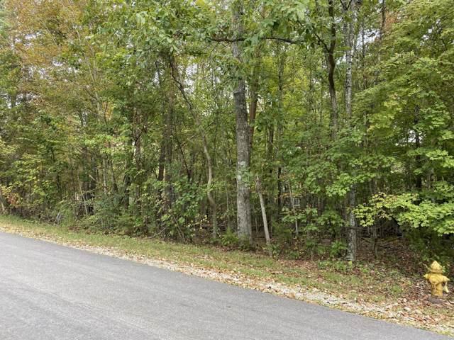 419 Igoti Lane, Loudon, TN 37774 (#1096253) :: Venture Real Estate Services, Inc.