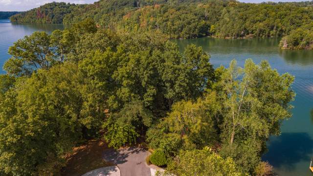 228 W Cove Drive, Greenback, TN 37742 (#1096381) :: Venture Real Estate Services, Inc.