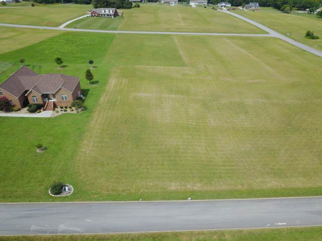 610 Kinsey Davis Drive, Walland, TN 37886 (#1096426) :: SMOKY's Real Estate LLC