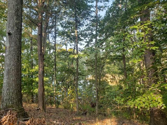 412 Chelaque Way, Mooresburg, TN 37811 (#1096473) :: Billy Houston Group