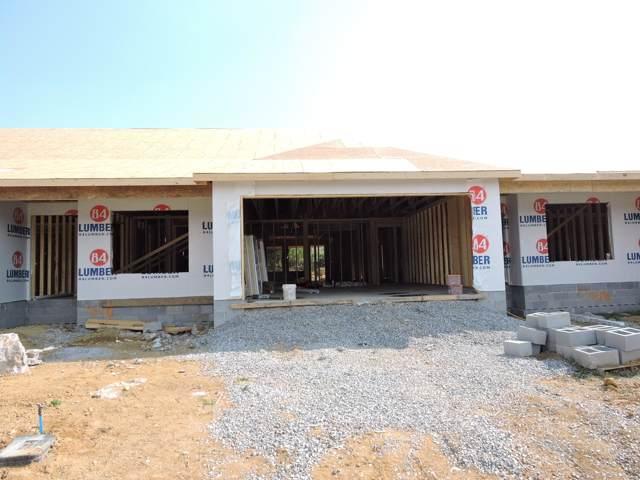 7036 Poskita Lane, Corryton, TN 37721 (#1096497) :: Realty Executives