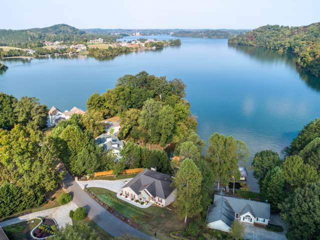 224 Northshore Drive, Greenback, TN 37742 (#1096672) :: Venture Real Estate Services, Inc.