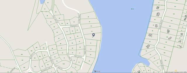 32 Eagle Nest Drive, Loudon, TN 37774 (#1096778) :: Billy Houston Group