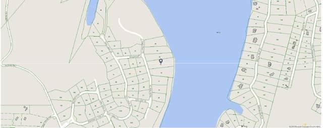 33 Eagle Nest Drive, Loudon, TN 37774 (#1096780) :: Billy Houston Group