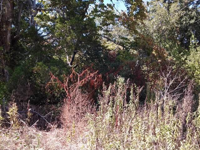 Oak Grove Rd, Madisonville, TN 37354 (#1097082) :: Catrina Foster Group