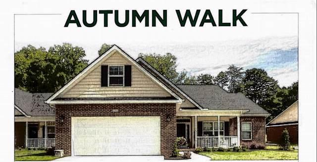 1697 Rocky Plains Lane, Knoxville, TN 37918 (#1097099) :: SMOKY's Real Estate LLC