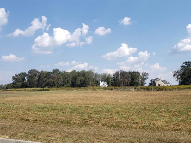 715 Majestic Mtns Blvd, Walland, TN 37886 (#1097241) :: SMOKY's Real Estate LLC