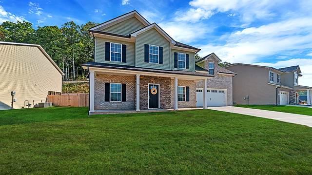 3118 Oakwood Hills Lane, Knoxville, TN 37931 (#1097247) :: Catrina Foster Group