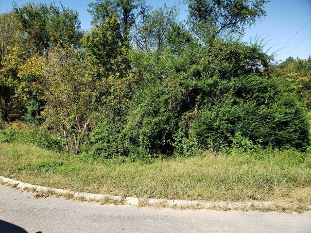 Lot 11 Stirrup Lane, Pigeon Forge, TN 37863 (#1097355) :: Realty Executives