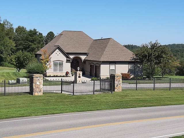 319 Rarity Bay Pkwy, Vonore, TN 37885 (#1097430) :: Catrina Foster Group