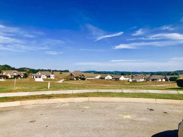 Cascading Falls Lane, Sevierville, TN 37876 (#1097508) :: Venture Real Estate Services, Inc.