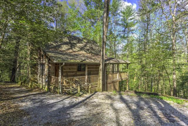 144 Black Mash Hollow Rd, Townsend, TN 37882 (#1097546) :: Billy Houston Group