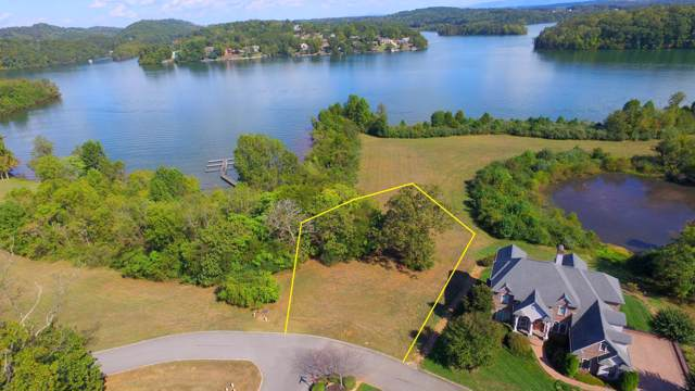 360 Cormorant Drive, Vonore, TN 37885 (#1097605) :: The Creel Group | Keller Williams Realty