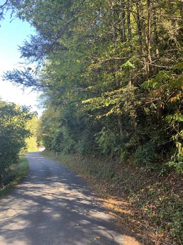 Lot 1-A Grassy Branch Loop, Sevierville, TN 37876 (#1097608) :: Catrina Foster Group