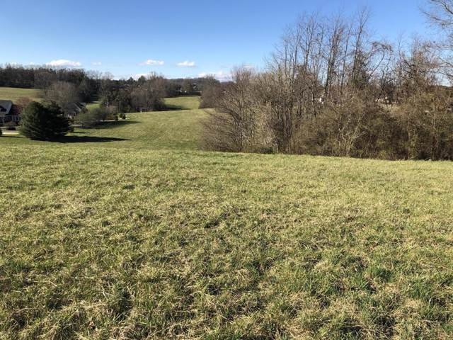 Old Hwy 33, New Tazewell, TN 37825 (#1097621) :: Billy Houston Group