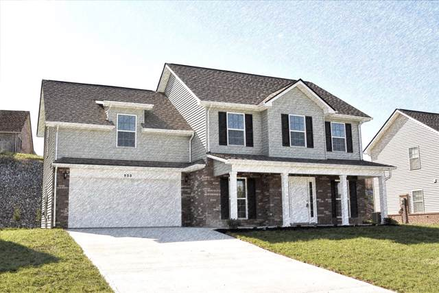 1033 Ruscello Drive, Maryville, TN 37801 (#1097709) :: Billy Houston Group