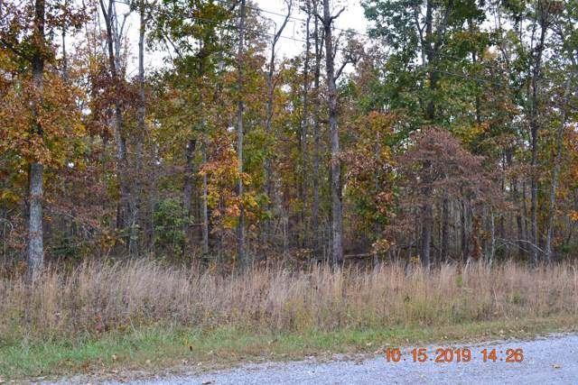 203 Nehasane Lane, Crossville, TN 38572 (#1097791) :: Billy Houston Group
