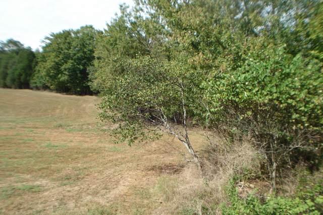 Highway 61 W, Andersonville, TN 37705 (#1097806) :: The Creel Group | Keller Williams Realty