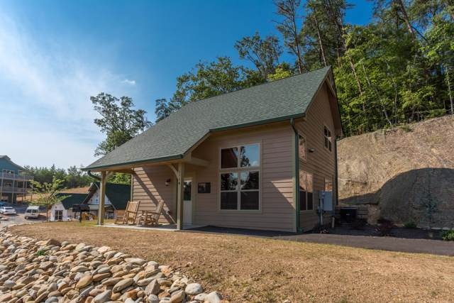 1114 Cove Falls Way, Pigeon Forge, TN 37863 (#1097813) :: Billy Houston Group