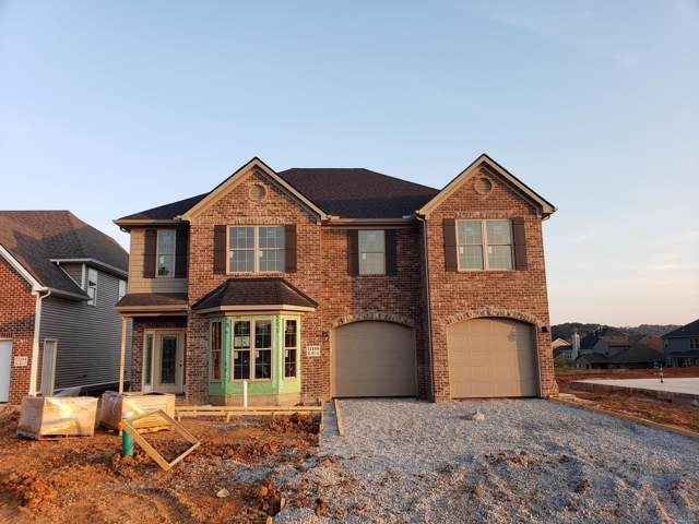 11108 Big Sky Lane, Knoxville, TN 37932 (#1097853) :: Billy Houston Group