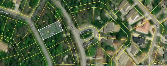 104 Utsesti Way, Loudon, TN 37774 (#1097894) :: Catrina Foster Group