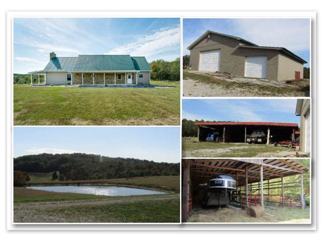 187 Anthony Rd, Sunbright, TN 37872 (#1097915) :: Billy Houston Group