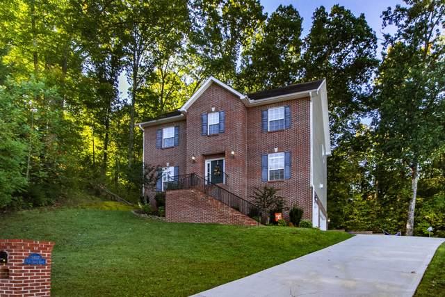 2107 Elm Grove Lane, Knoxville, TN 37932 (#1097922) :: Realty Executives