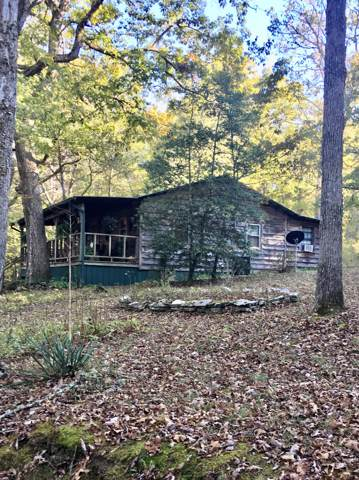 375 Scott Wyatt Rd, Deer Lodge, TN 37726 (#1097949) :: Shannon Foster Boline Group