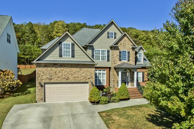 1301 Paxton Drive, Knoxville, TN 37918 (#1097958) :: Realty Executives