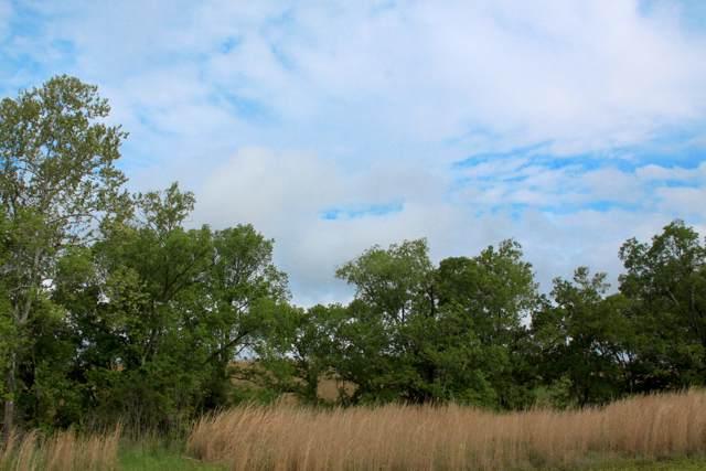 116 Roaming Fawn Lot 627 Drive, Rockwood, TN 37854 (#1097973) :: The Creel Group   Keller Williams Realty