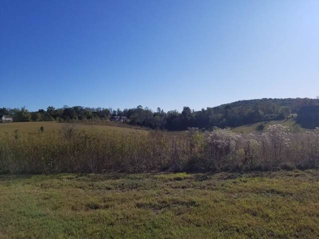 225 Majestic View Drive, Rockwood, TN 37854 (#1098051) :: The Creel Group   Keller Williams Realty