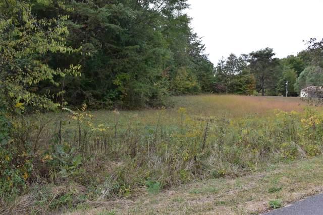 Virginia Ave, Sevierville, TN 37876 (#1098054) :: Billy Houston Group