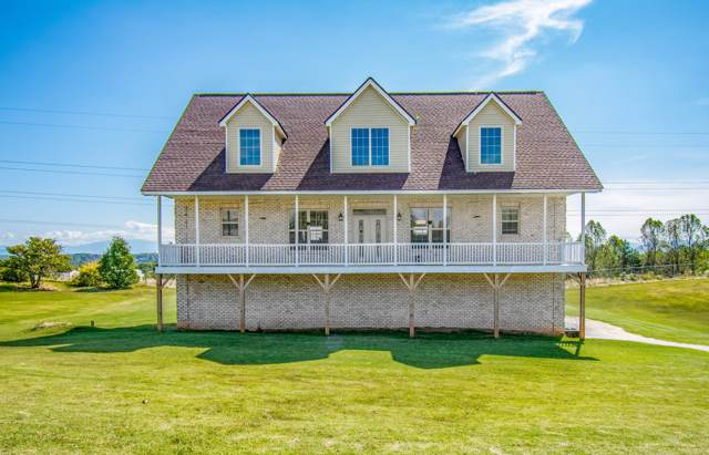 2093 Strawberry Drive, New Market, TN 37820 (#1098064) :: Billy Houston Group