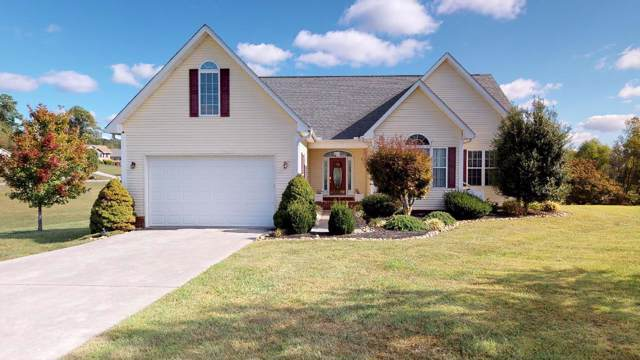 1841 Pheasant Crossing Drive, Dandridge, TN 37725 (#1098122) :: Billy Houston Group