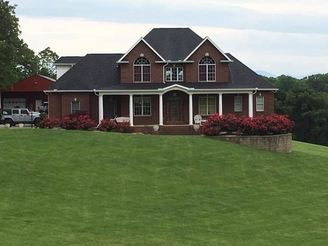 1875 Fain Cemetery Road Rd, Dandridge, TN 37725 (#1098150) :: Billy Houston Group