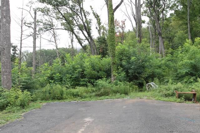 Topside Rd, Gatlinburg, TN 37738 (#1098175) :: Shannon Foster Boline Group