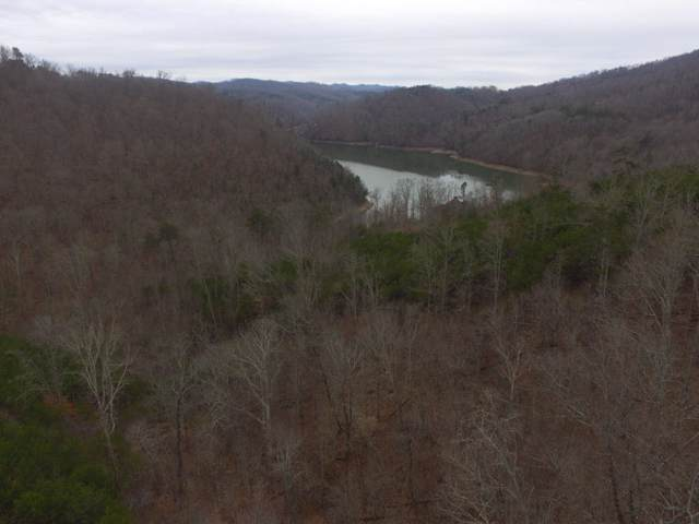 Lot 596 Whistle Valley Rd, New Tazewell, TN 37825 (#1098328) :: Realty Executives